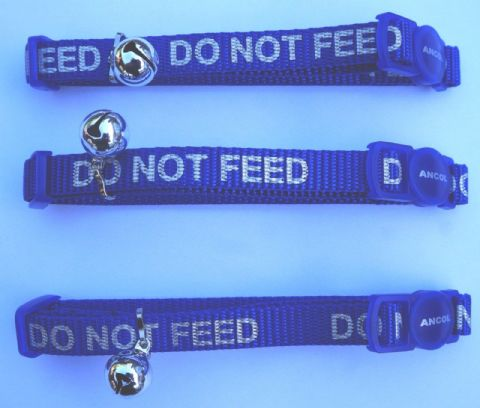 BULK DEAL 3 X DO NOT FEED REFLECTIVE ANCOL SAFETY CAT COLLARS BLUE